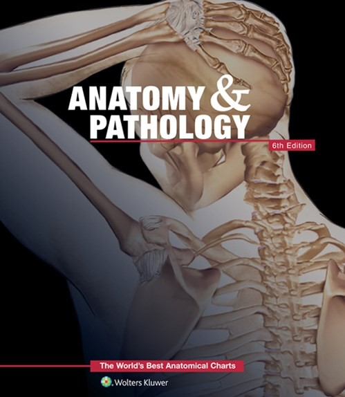 The Worlds Best Anatomical Charts Anatomy and Pathology 6th Edition